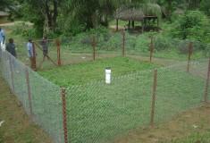 Haindii_Rainfall Station